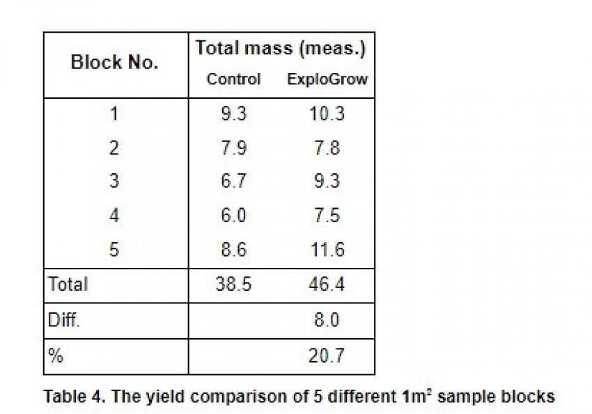 Beetroot Increased Yield Graph 2