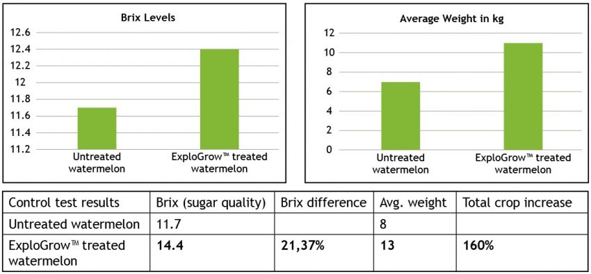 Watermelon Yield And Brix Increase Graph