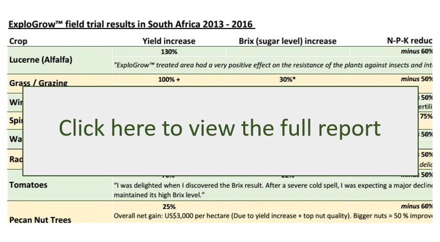Organic biofertilizer field trial results in South Africa from 2013 to date (updated: 08 June 2016)